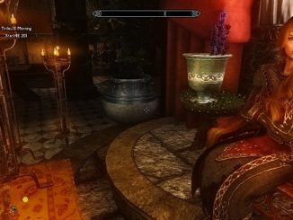 Skyrim screenshot showing character